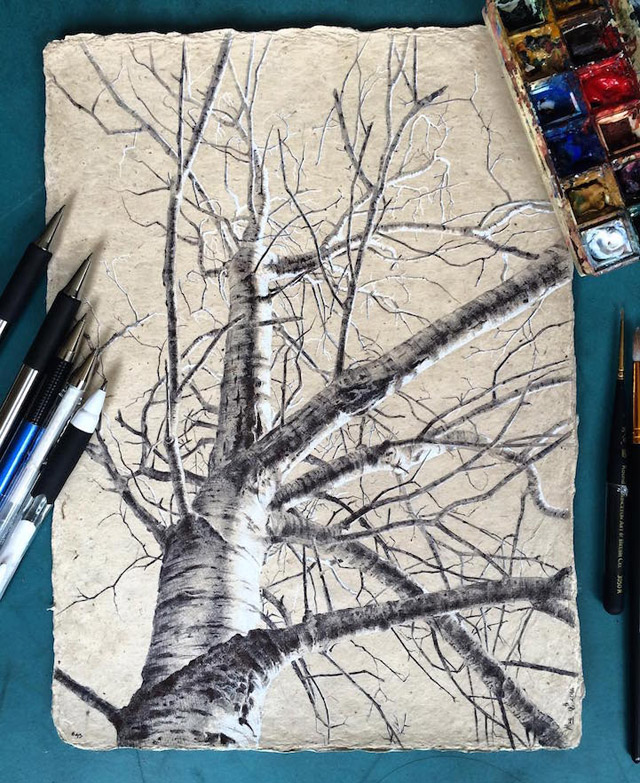 "из серии ""The Secret Life of Trees"""