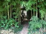 Парк Южных культур в Адлере-11