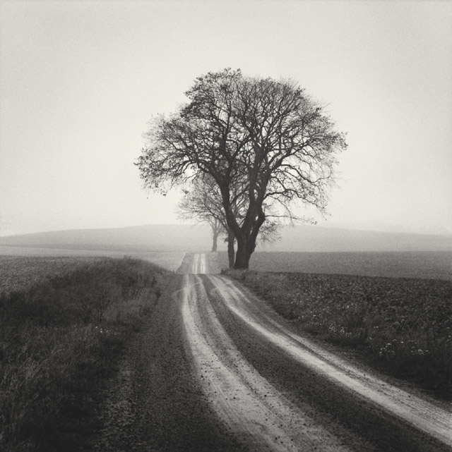 Photo: Håkan Strand