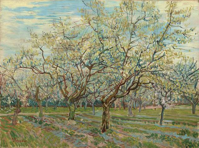 Картина Винсента Ван Гога «Белый сад» (1888), 60×81 см, Van Gogh Museum, Amsterdam (Vincent van Gogh Foundation).