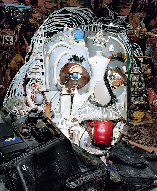 анаморфная инсталляция - «Портрет Эйнштейна», автор - Бернар Пра