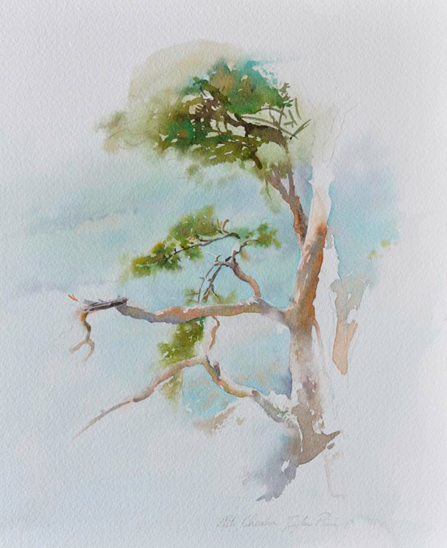 акварель американского художника Дилана Скотта Пирса