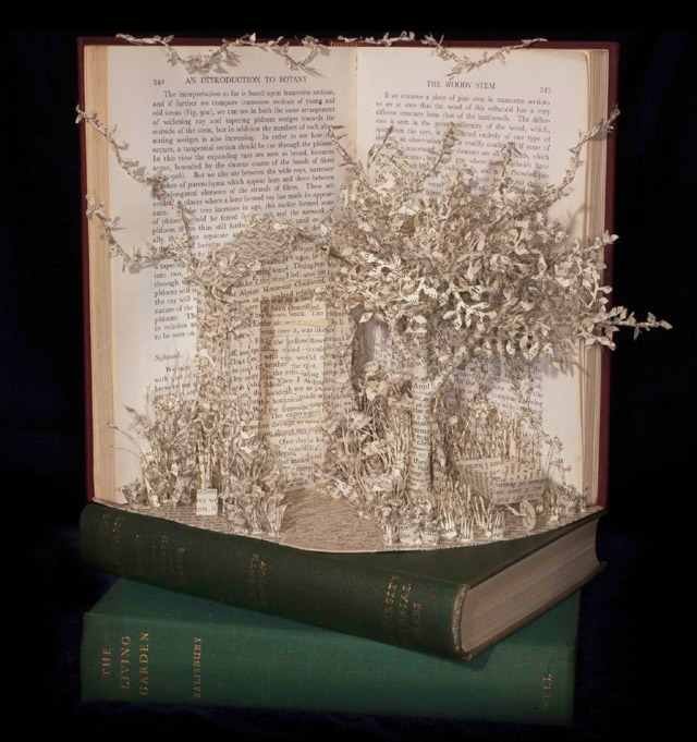 бумажная скульптура Эммы Тэйлор