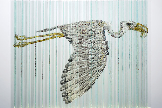Птица на стекле