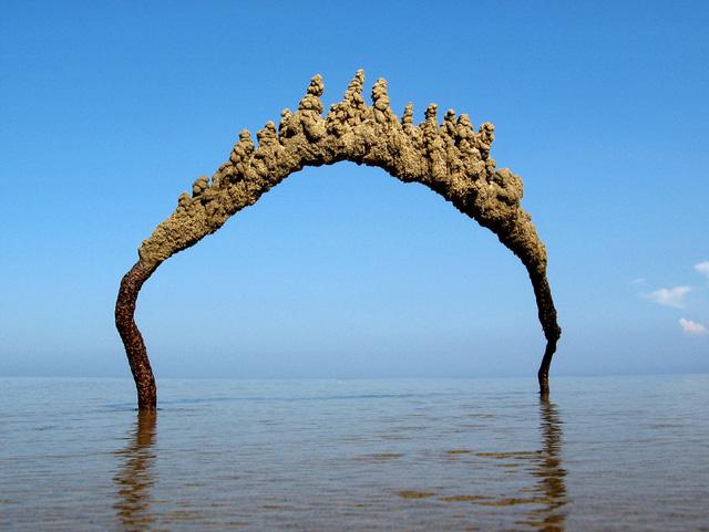 Sandcastlematt-05