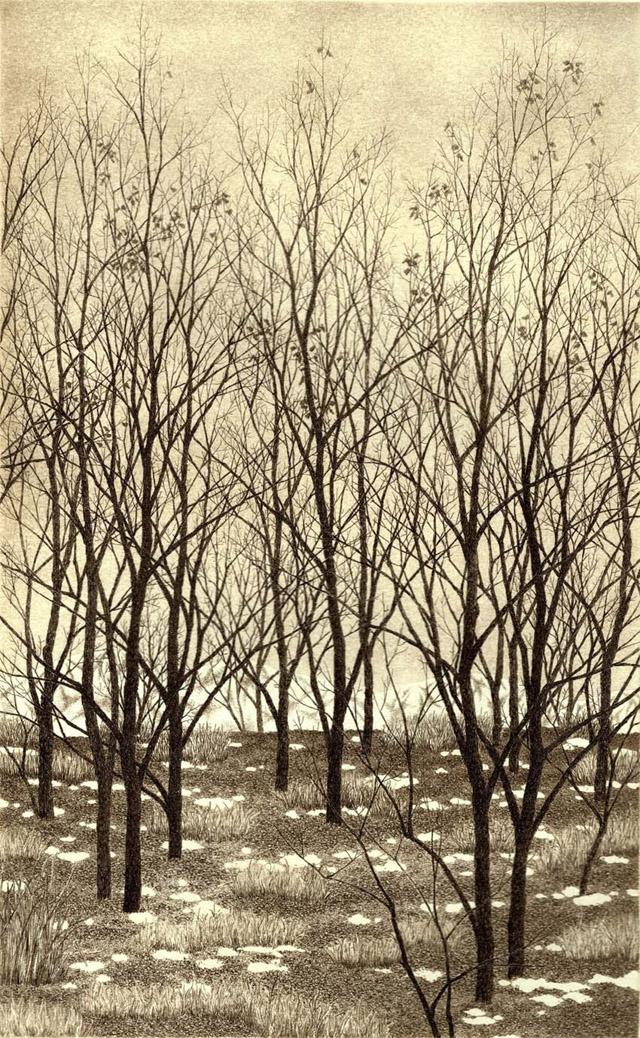 современная японская гравюра, автор - Танака Рёхей